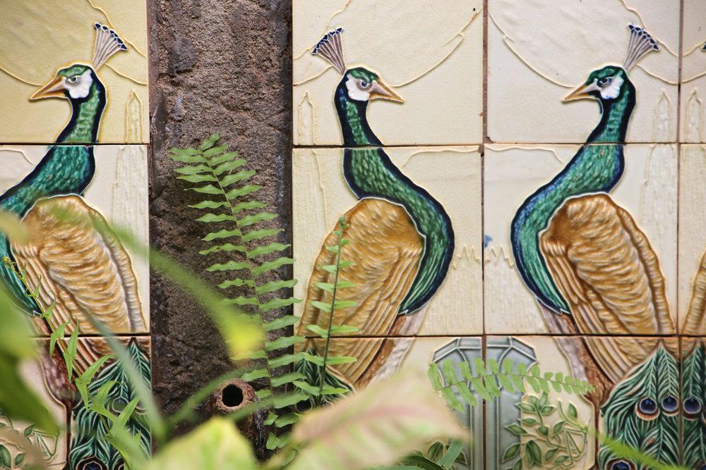 AhilyaByTheSea-Goa-Peacocks.jpg