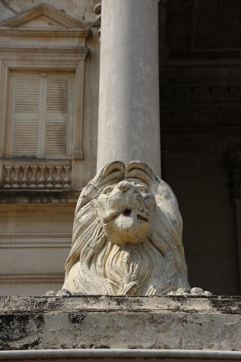 P&G-BristihResidency-lions