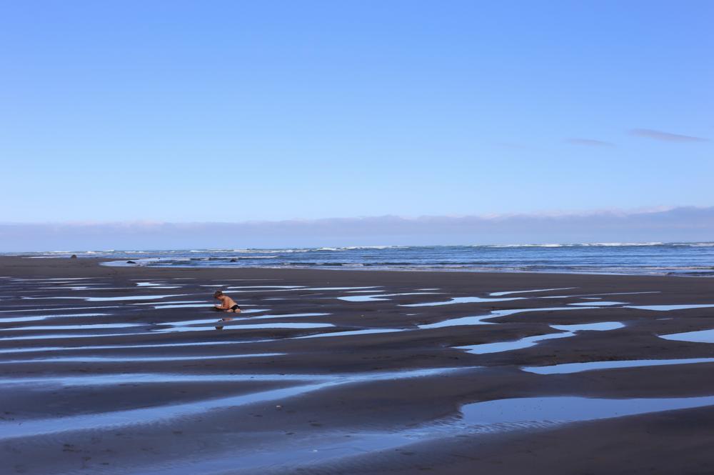 raglan-harry-beach-rockpools.png