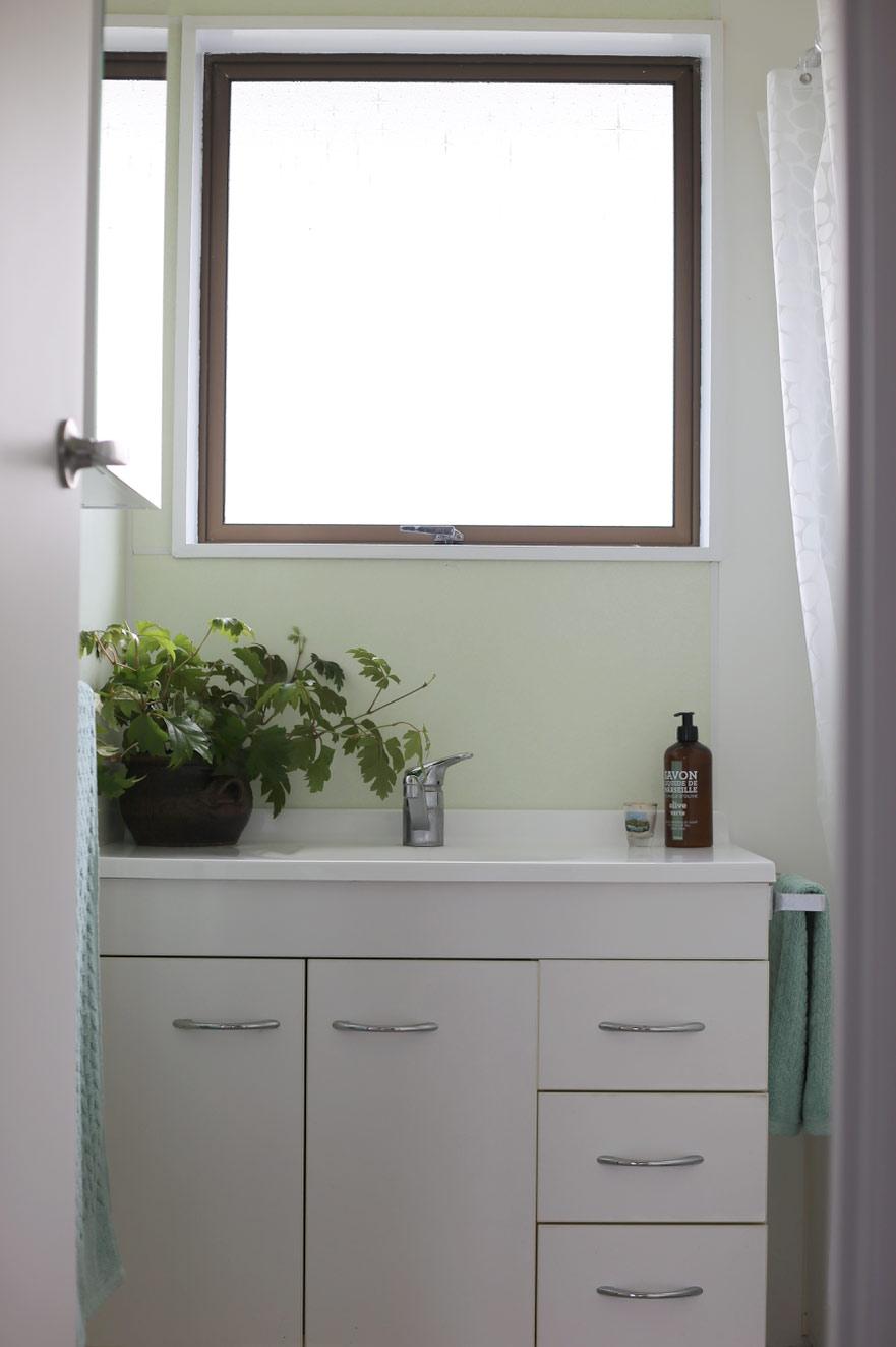 P&G-Snells-bathroom.jpg