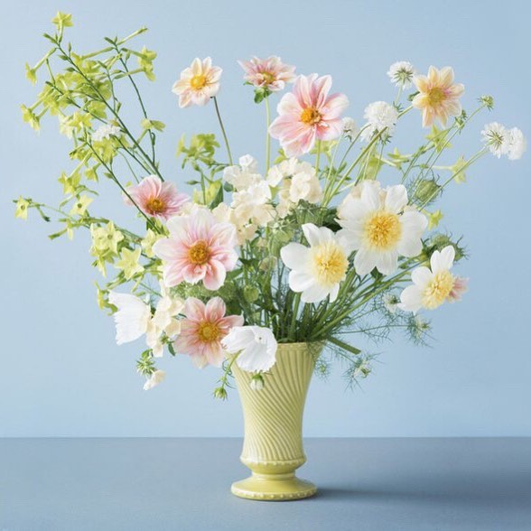 So pretty and what a cool idea! I just had to share this discovery with you, even though it's only available in the U.S and this particular bunch - the 'Buttercream collection' is sold out - there are other just as delightful choices 😊@ploverorganic have curated four bunches of cutting flowers that work together and flower at the same time - so all you have to do is plant, nurture, cut, arrange and enjoy ; ) what a wonderful idea ; ) and the photo by @cel.jarvis is pretty choice too 👌