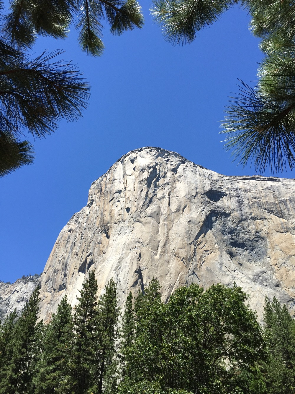 El Capitan. No climbers on it this day - too hot.