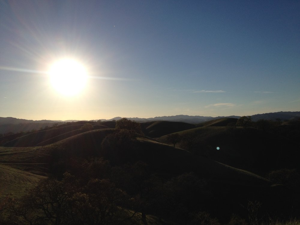 Diablo Foothills Regional Park, 2014