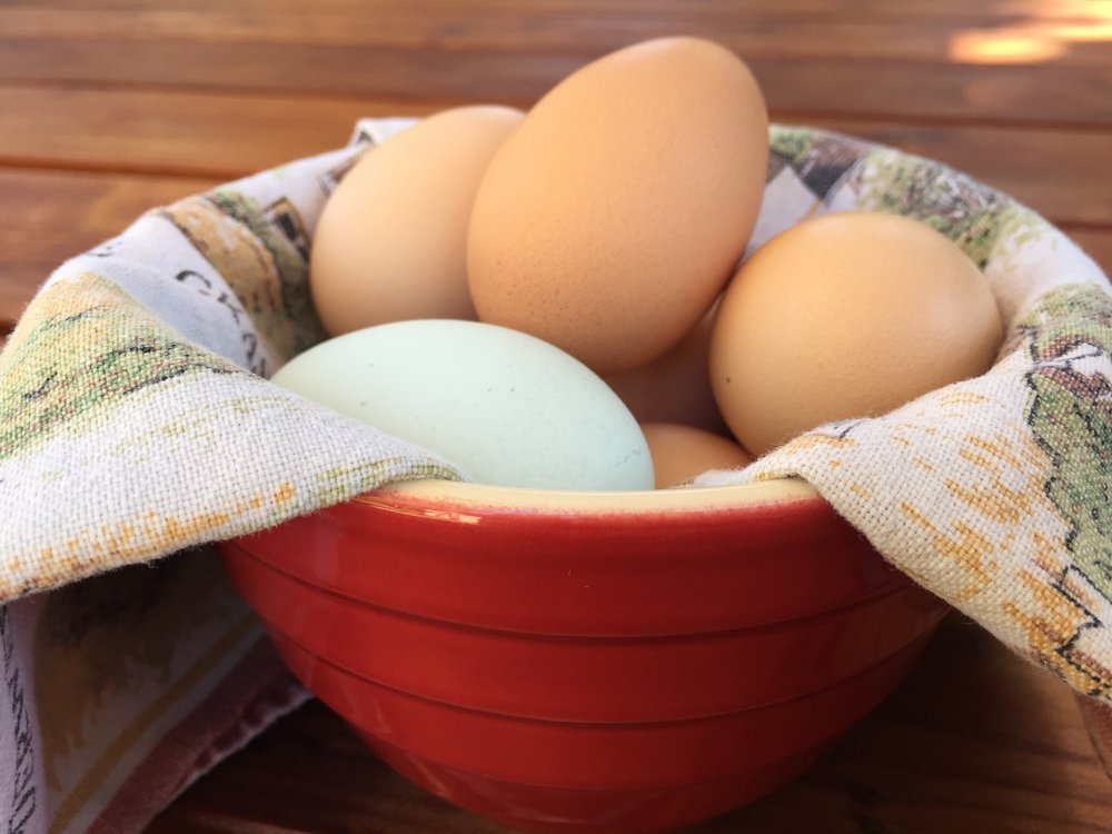 a bowlful of our own beautiful chicken eggs