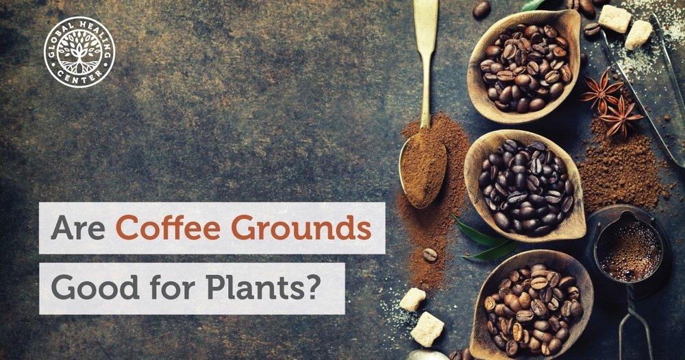 coffee-grounds-fb.jpg