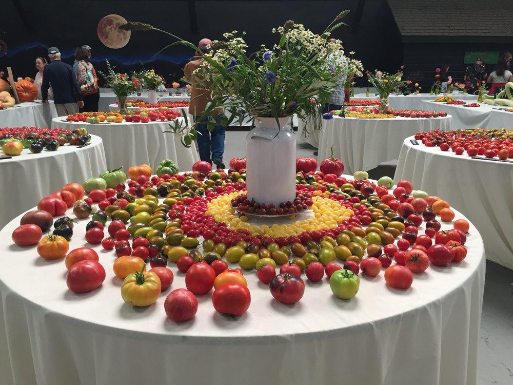 tomato art
