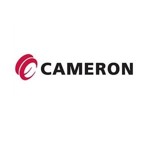 cameron+romania+business.jpg
