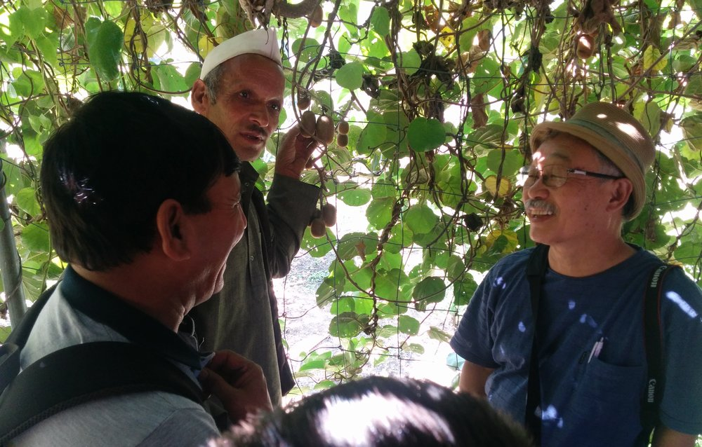 This Indian villager chose to organically farm kiwi fruit because of what other farmers are doing,  his soil, the technical advice of a Japanese organic specialist available to him and his prediction of the future buying habits of consumers 100 km away. Much more complex than poker! (photo from MGVS field  work)