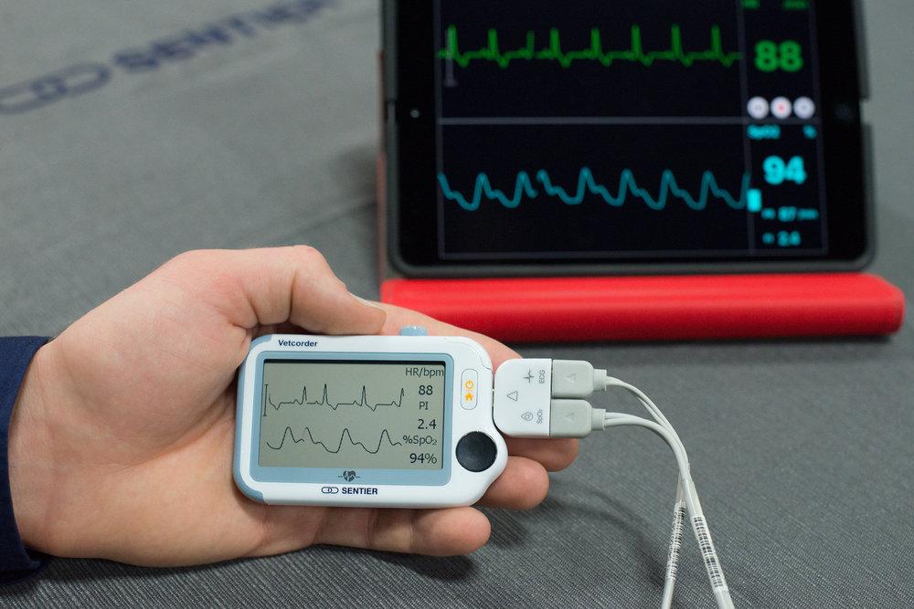 Sentier Vetcorder SpO2 ECG Bluetooth iPad Monitor