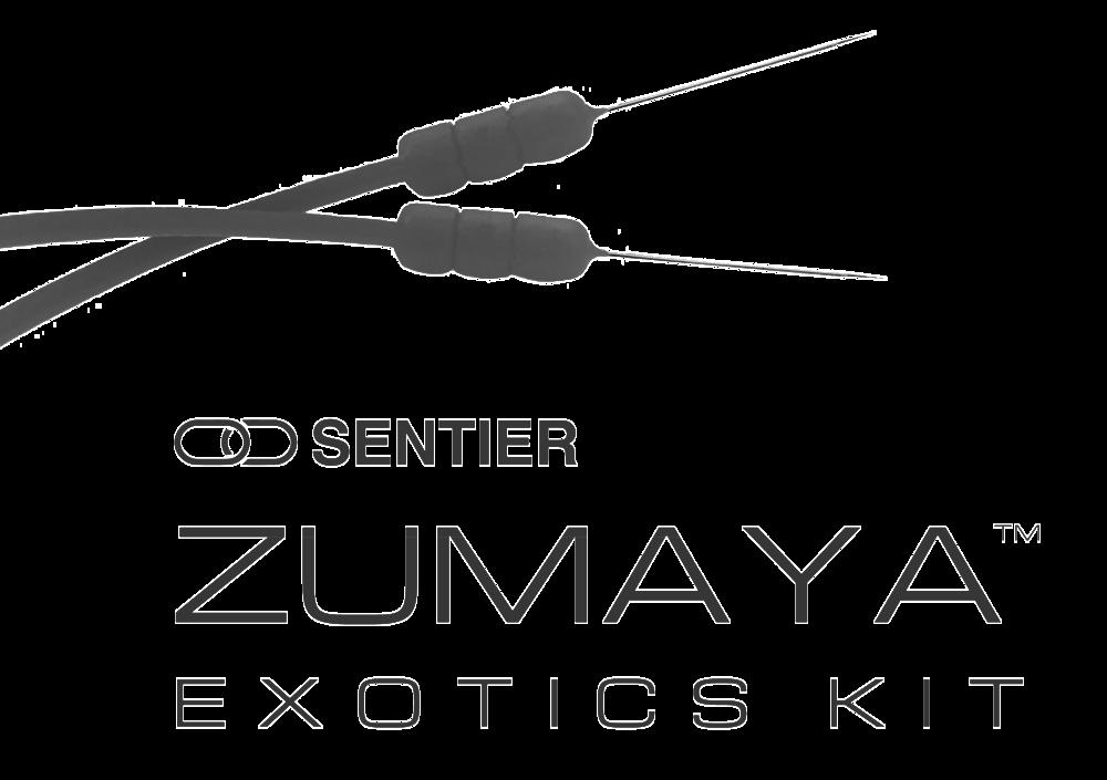 ZUMAYA™ Buckslip.png