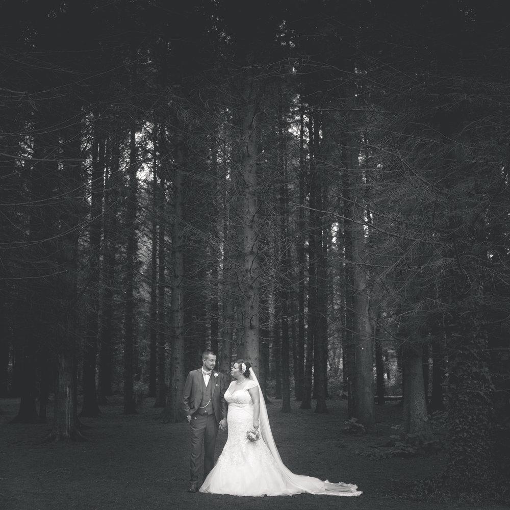 Antoinette & Stephen - Portraits   Brian McEwan Photography   Wedding Photographer Northern Ireland 20.jpg