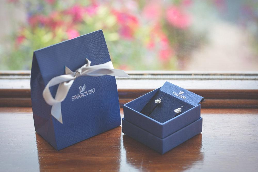 Brian McEwan Wedding Photography | Carol-Anne & Sean | Bridal Preparations-27.jpg