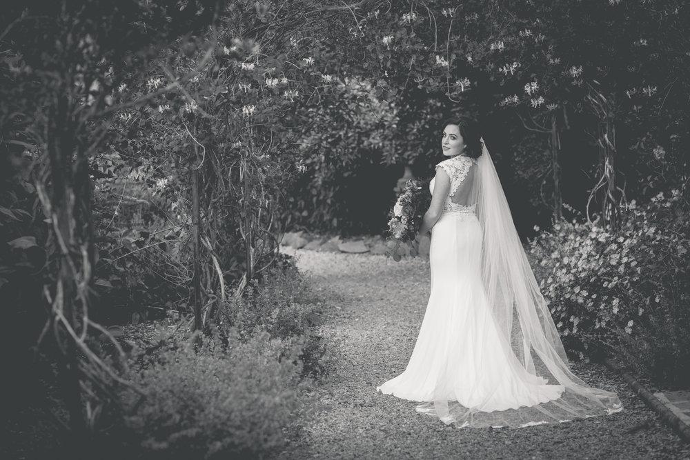 Brian McEwan Wedding Photography | Carol-Anne & Sean | The Portraits-35.jpg