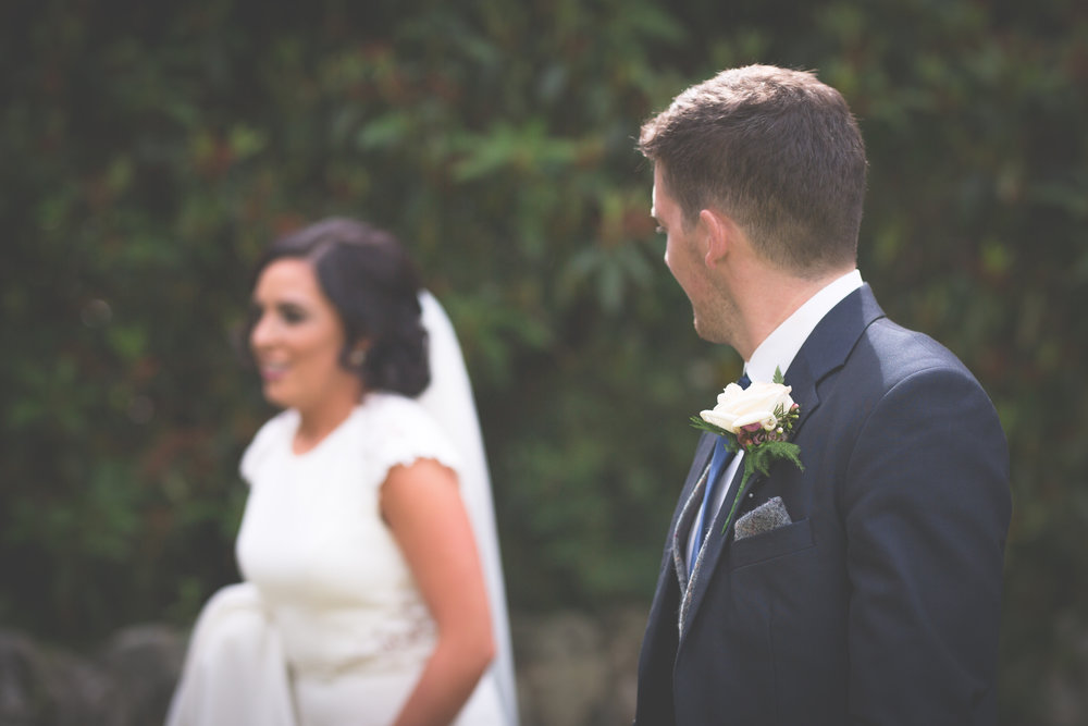 Brian McEwan Wedding Photography | Carol-Anne & Sean | The Portraits-66.jpg