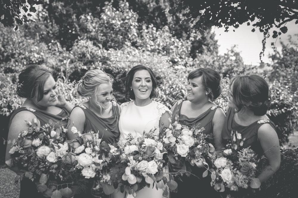 Brian McEwan Wedding Photography | Carol-Anne & Sean | The Portraits-102.jpg