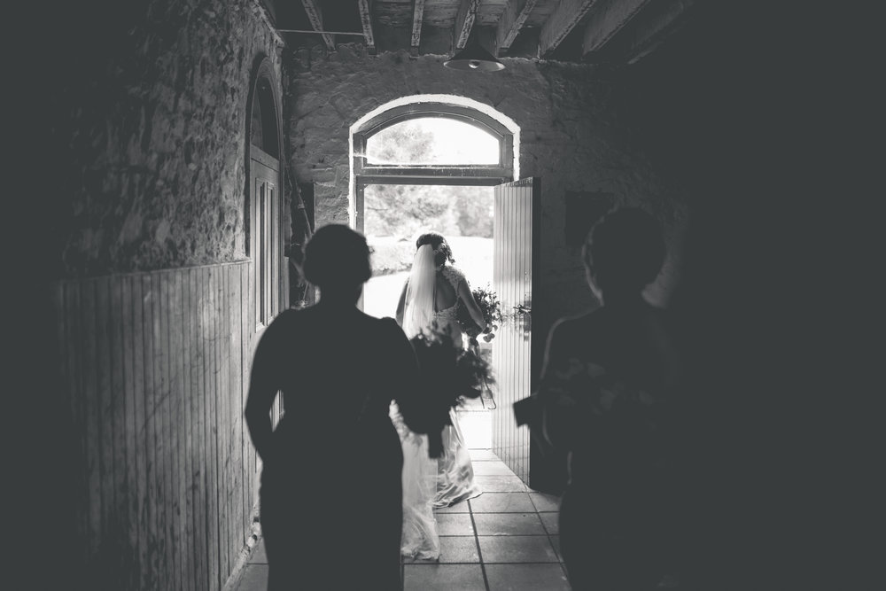 Brian McEwan Wedding Photography | Carol-Anne & Sean | The Portraits-171.jpg
