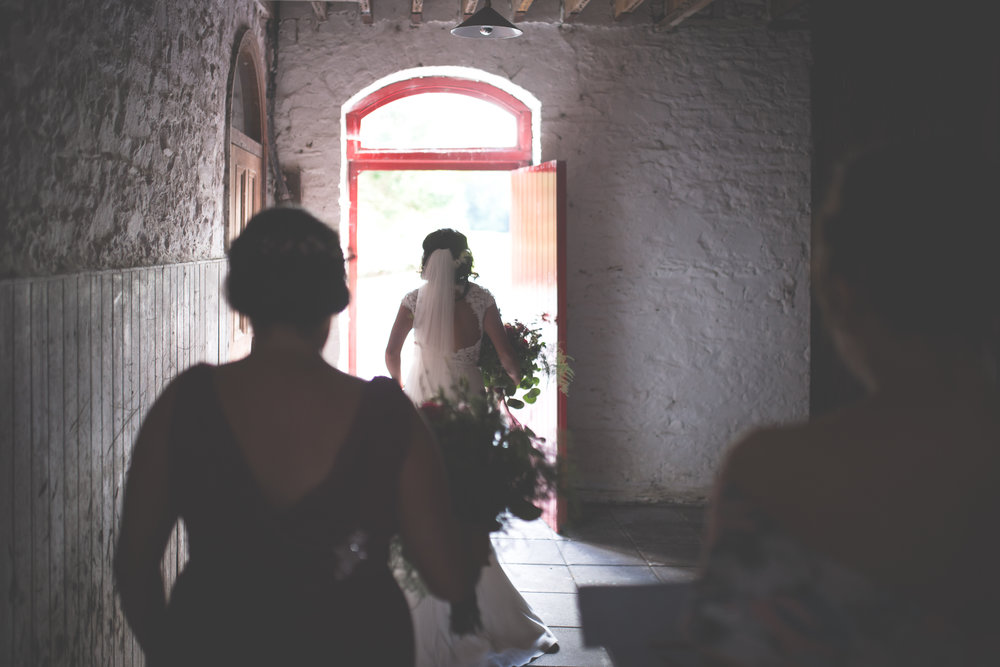 Brian McEwan Wedding Photography | Carol-Anne & Sean | The Portraits-170.jpg