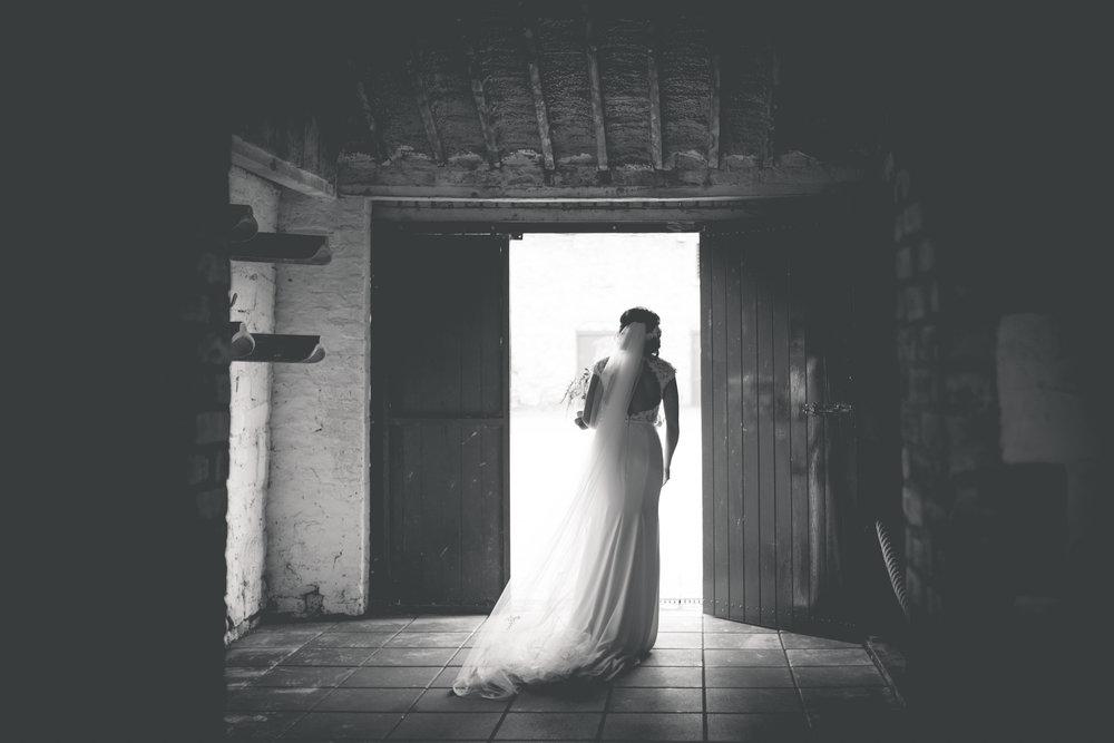 Brian McEwan Wedding Photography | Carol-Anne & Sean | The Portraits-182.jpg