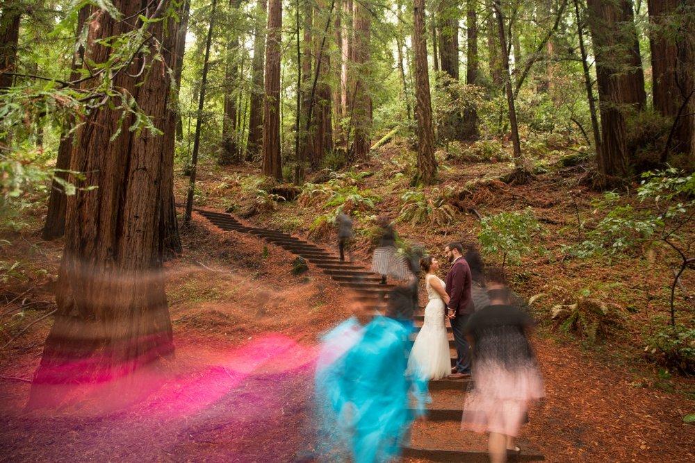 Redwoods and Newlyweds :: Award-winning Wedding Photography by Michael Thomas