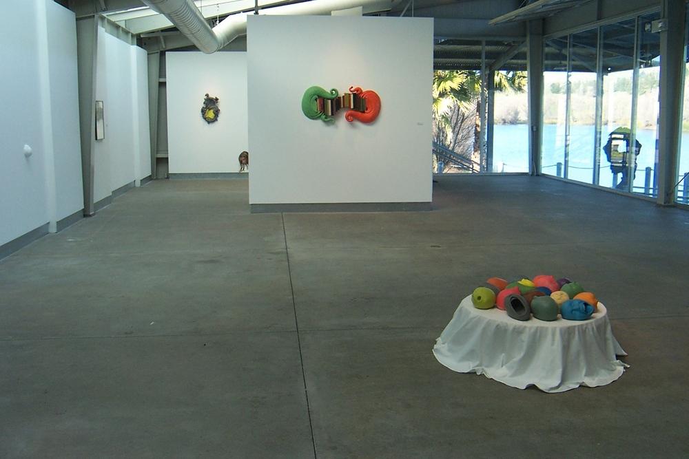 Installation view 2,di Rosa, 2008
