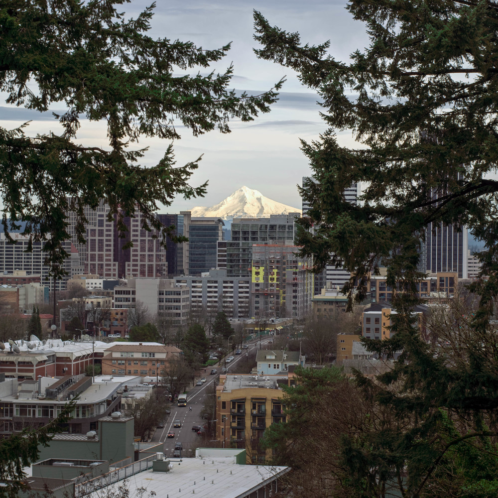 View of Mt. Hood | Portland, OR