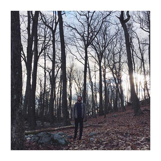 Niko in the woods