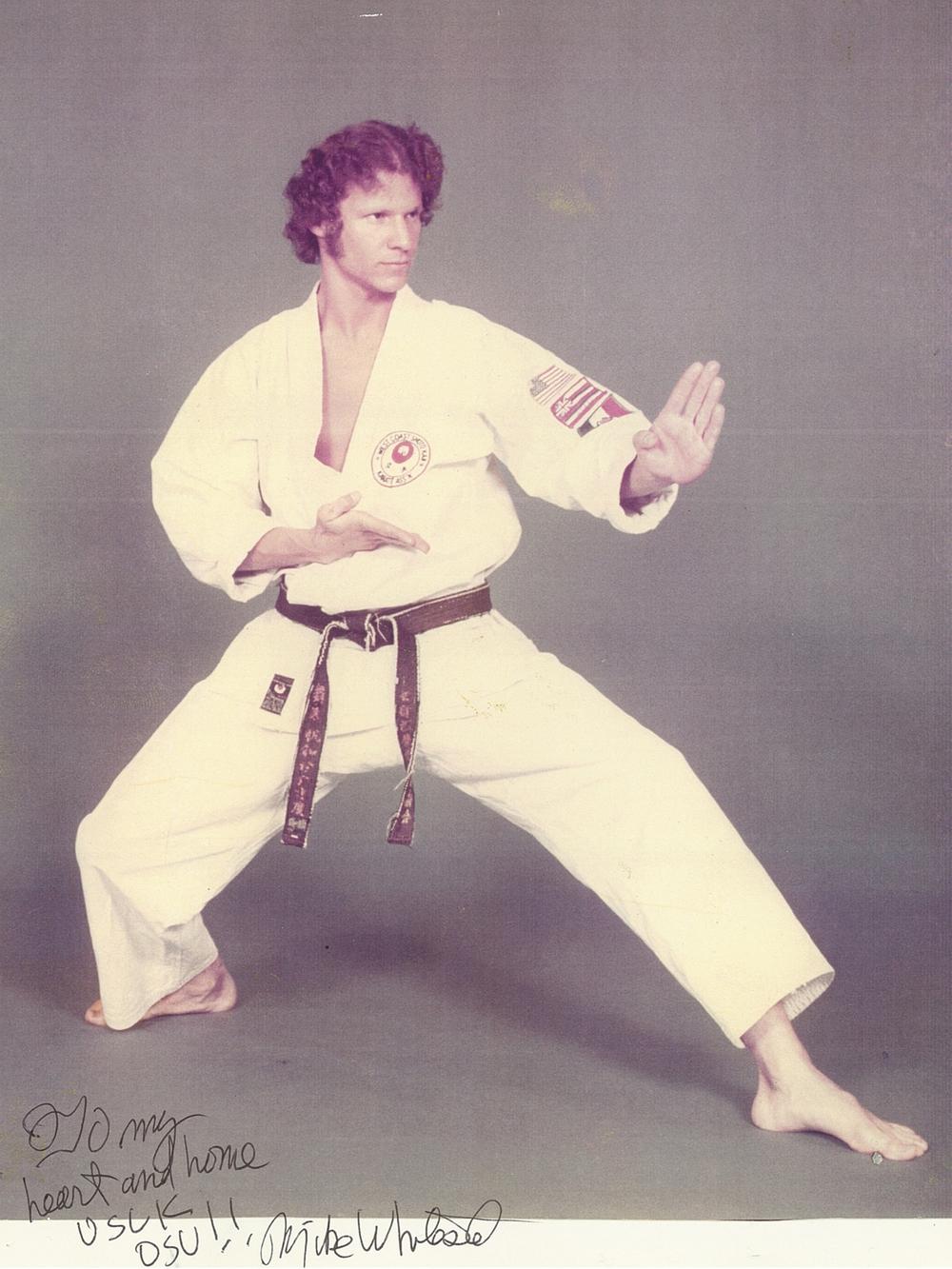 Sensei Mike Whiteside Long back stance.jpg