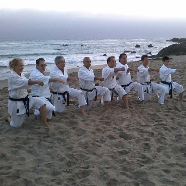 Malibu Beach Karate Summer Camp 2013   Left to Right: Lynn Aponte, James Augur, Leo Shortle, Vern Vaden, Ty Aponte, Robert Nunez, Keelan Aponte, and Max Chao-Haft