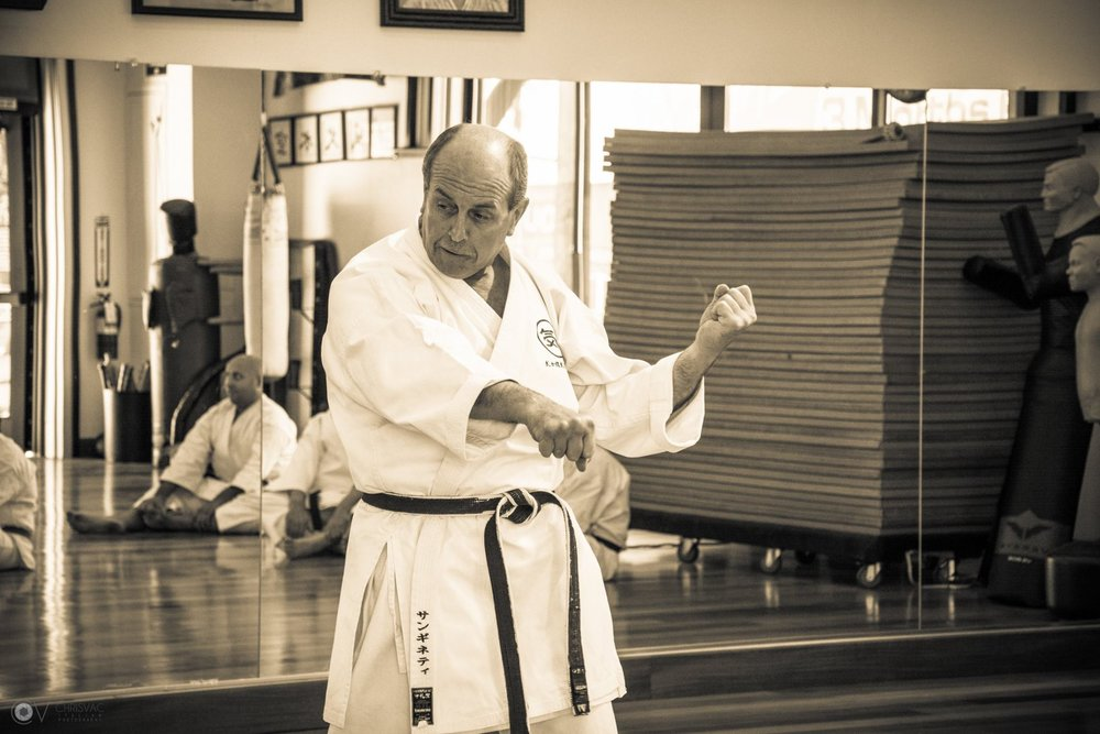 Sanchin seminar picture 2.jpg
