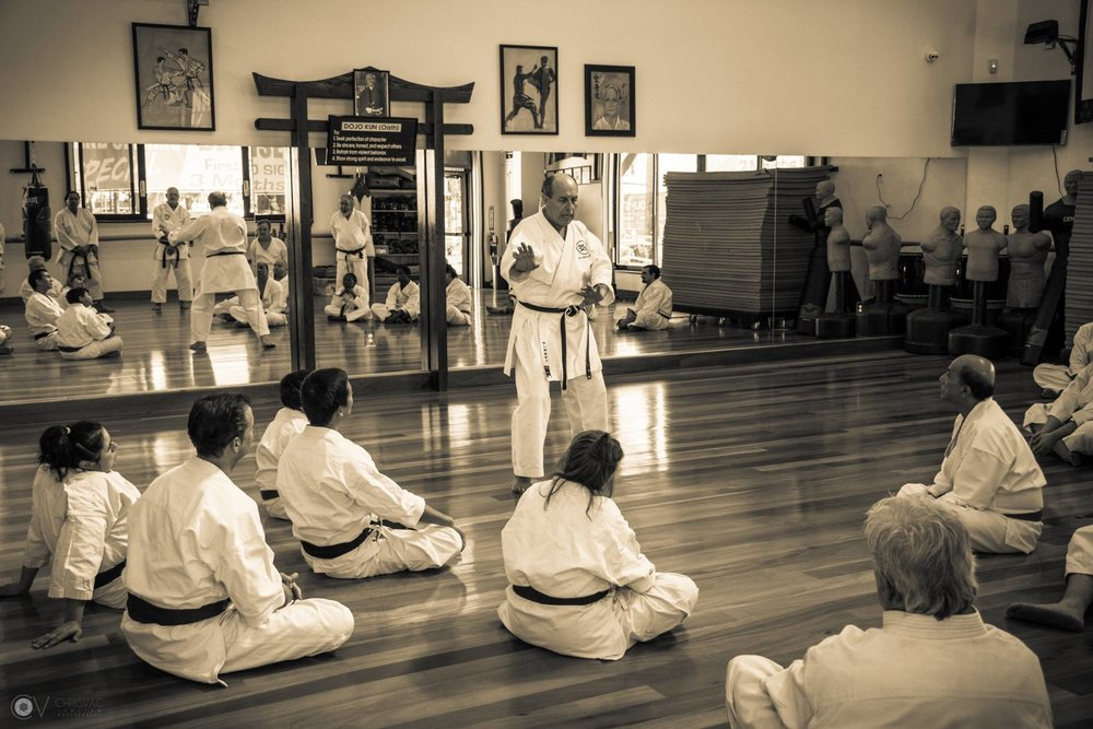 Sanchin seminar picture 3.jpg