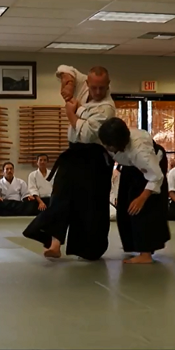 Aikido tall.png