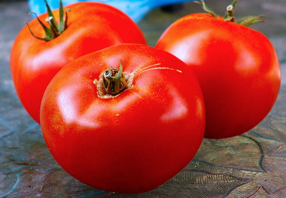 Tomato.Jetsetter.jpg