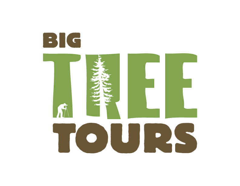 Big Tree Tours