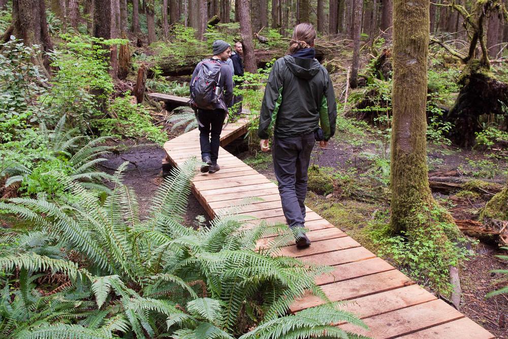 Trail-Examples-Avatar-1.jpg