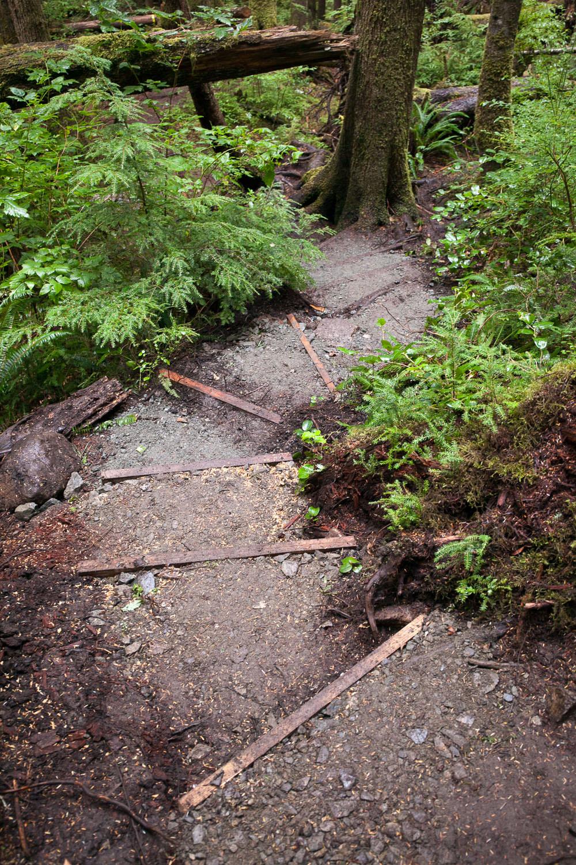 Trail-Examples-Avatar-15.jpg