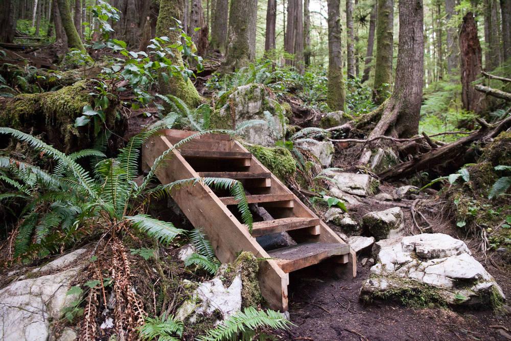 Trail-Examples-Avatar-14.jpg
