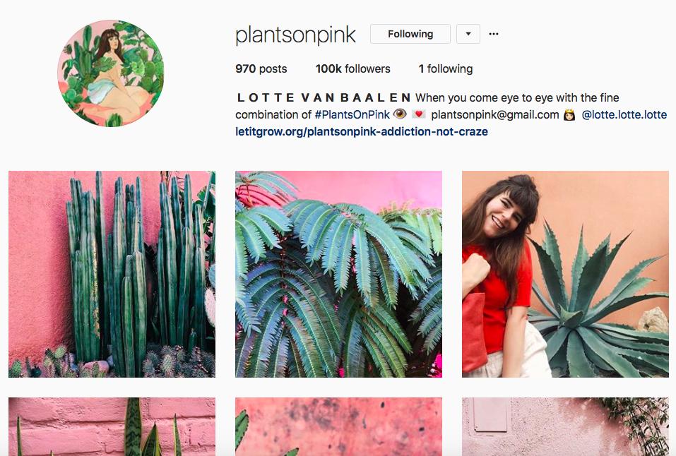 @Plantsonpink -