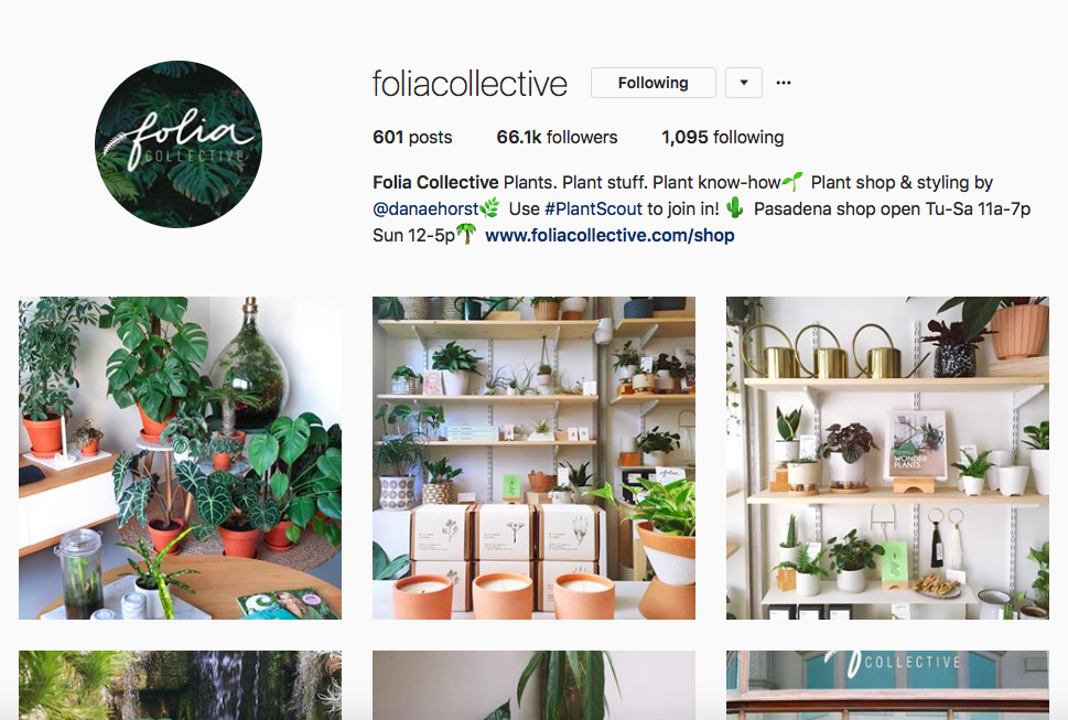 @foliacollective -