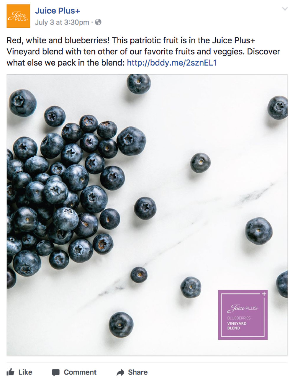 Juice Plus+ Blueberries