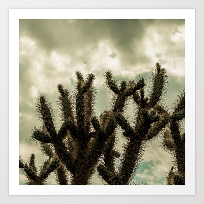 - Cactus_0009 Art Print