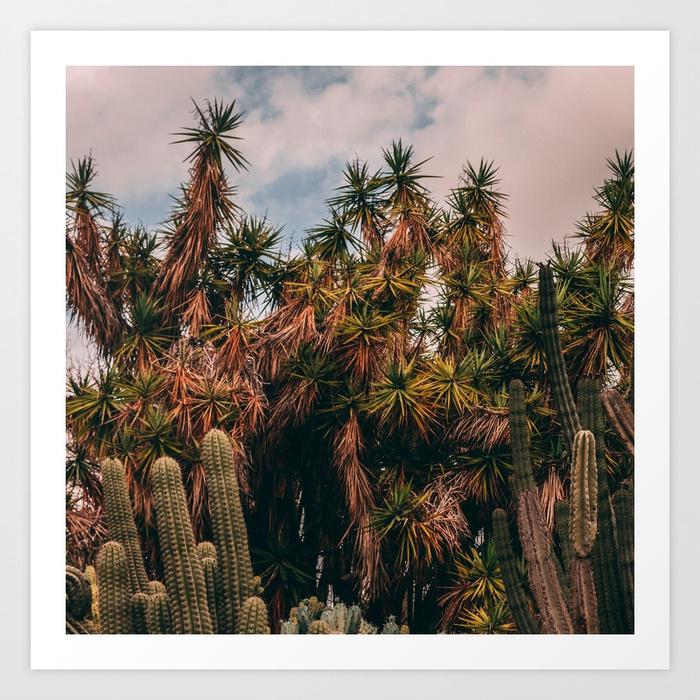 - Cactus_0016 Art Print