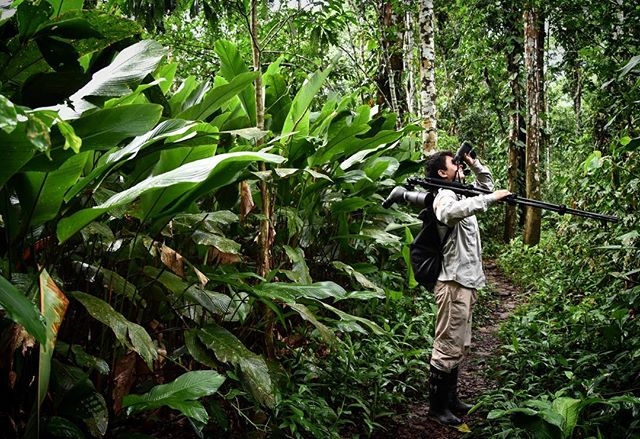 Here's a picture of someone who isn't me (but we can act like it is)(it was my guide) in the Rainforest.  I like this picture because the best part of the rainforest wasn't the animals, it was being lost in lush forest