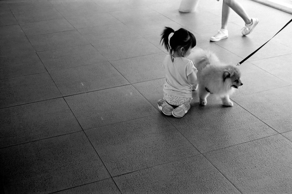 chromacomaphoto street photography bangkok thailand film tri x summicron rigid 50 leica m4 black and white (5).JPG