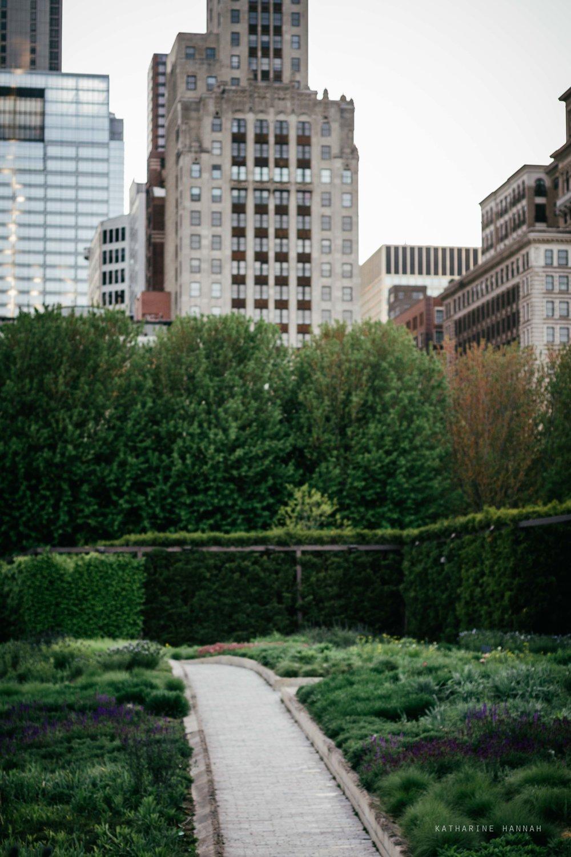 Millenium Park Chicago senior poctures