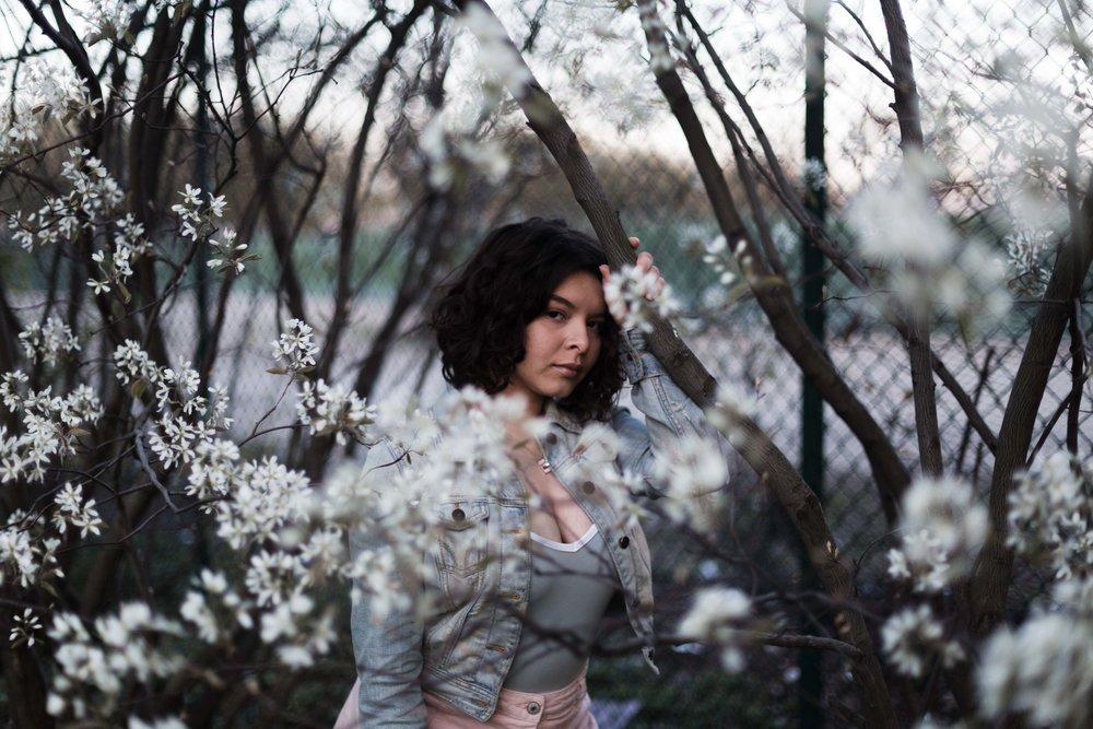 Meadow 2 -