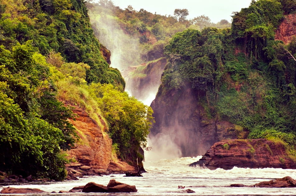 The majestic Murchison Falls, also called Kabalega Falls, are one of our destinations. The water tumbles down 43 meters after the Nile presses the water through a gap just 7 meters wide.