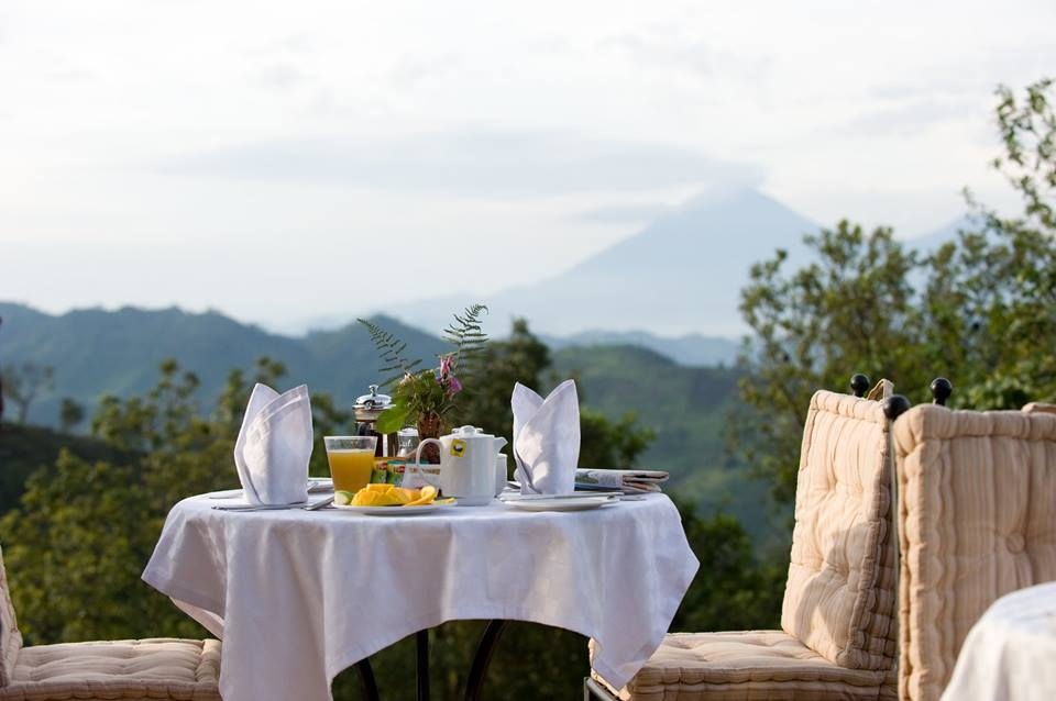 Immagine at sunrise sitting at 2,000 m with Bwindi forest at your back,the virungas on the front and your table is laid amidst.This is silverbacks and golden views you can't miss!