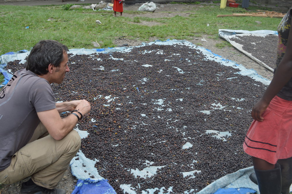 Get off the beaten paths and learn about local coffee processing.