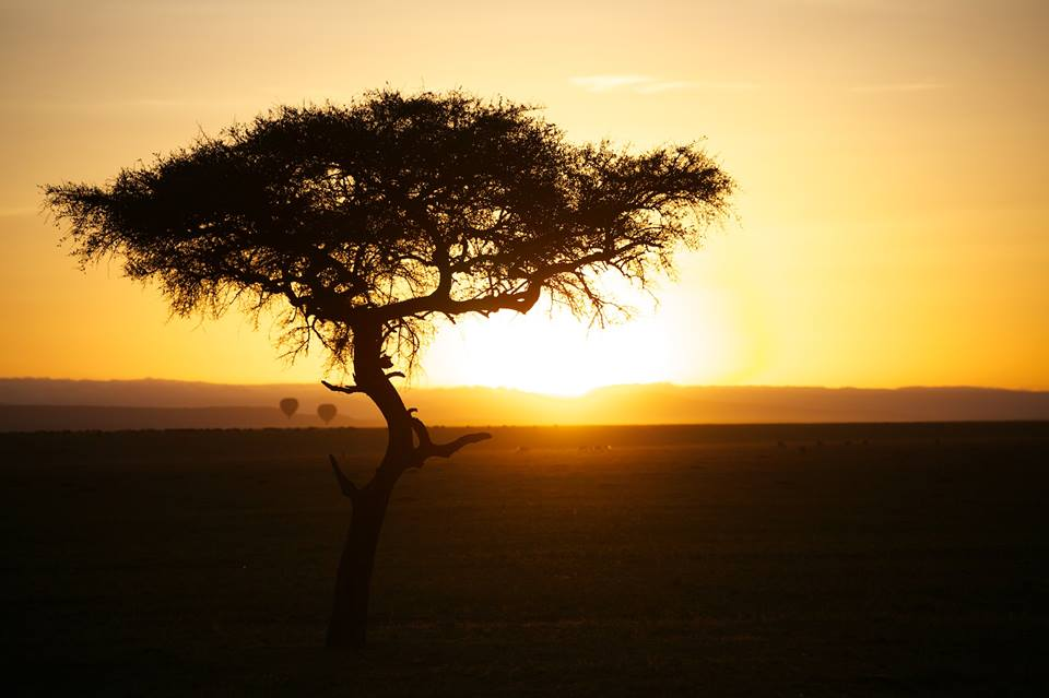 How peaceful Africa can be jpg