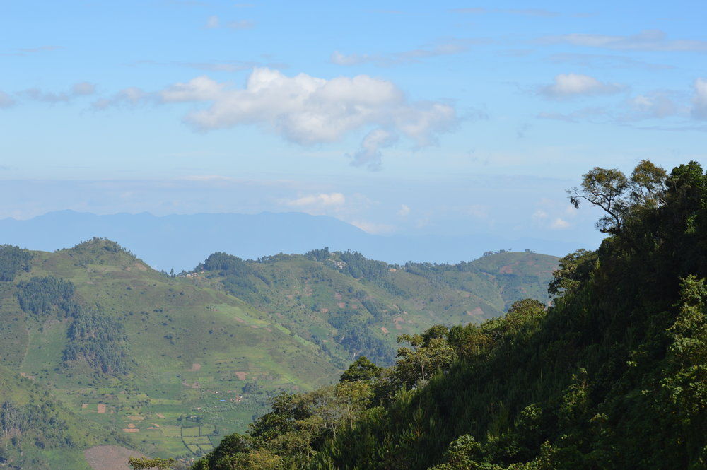 Albertine rift escarpments with an extension to Congo.jpg